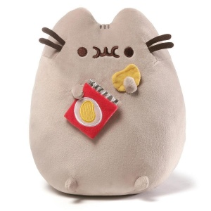 Kotek PUSHEEN i chipsy